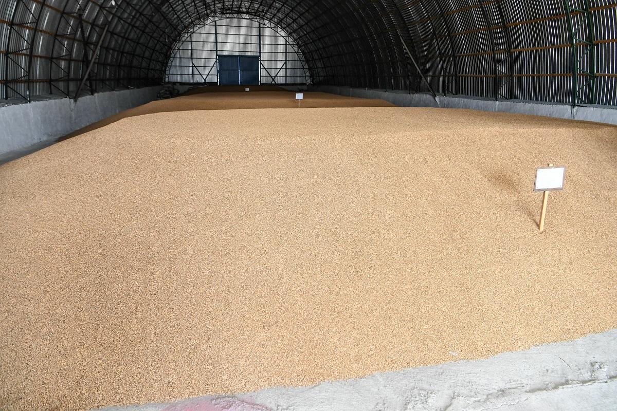 Элеватор в татарстане элеватор зерновой нива цена