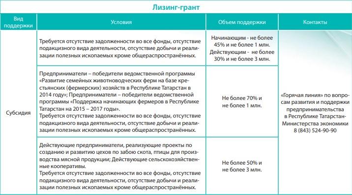 Программа Лизинг грант в Татарстане